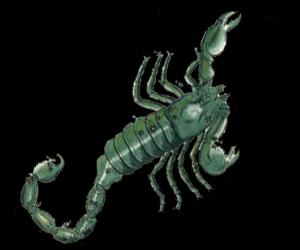 scorpius mythology